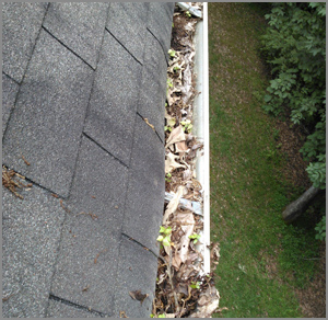 Gutter Repairs Maintenance Coventry Warwick Leamington Spa